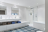 Badezimmer in einer modern dekorierten und eingerichteten Jugendstilwohnung in Hamburg, Norddeutschland, Europa