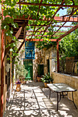 Front yard with grapevines in side alley in Chania, northwest Crete, Greece