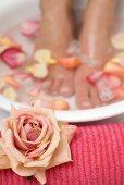 Woman bathing her feet in rose petal water