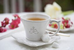 A cup of tea and sugar cubes