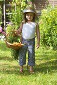 Kleines Mädchen hält Korb mit Möhren im Garten