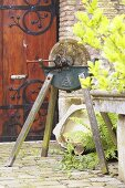 Old grindstone in garden