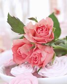 Pink roses and rose soaps