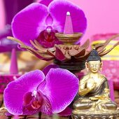 Orchids, incense cones and Buddha statue