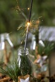 Sparkler in bottle decorated with pine sprigs, cinnamon star
