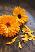 Marigolds in a wooden bowl
