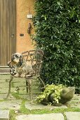Dog on a garden chair with a frog made from stone
