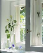 Glass vases of flowers on a window sill