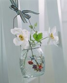 Flowers in a hanging vase