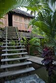 A flight of stairs leading to a palm hut with tropical vegetation