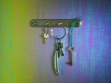 Keys and a sardine hanging on a key hook