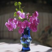 A bunch of pink bougainvillea in a blue glass vase