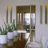 A row of cacti in white glass pots on a wooden table and wall niches either side of the open door with a view of a dining room