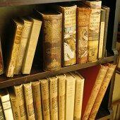 Antique books on a wooden shelf