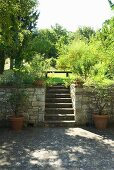 Treppen führen von der Terrasse zum Garten
