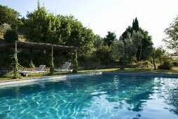 Ein grosses Schwimmbecken im Garten