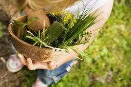 Kind hält Holzschale mit frischen Kräutern im Garten