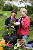 Two women planting up containers in garden