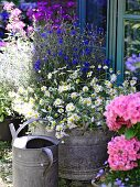 A summery garden with a watering can and flowers in a zinc bathtub