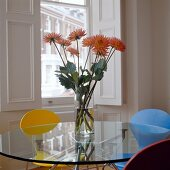Orange flowers in glass vase on a glass table top and colored chairs in front of a window