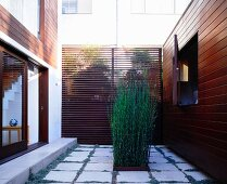 Courtyard with contemporary design with planting in the patio tiles in front of a wall made of wooden louvers