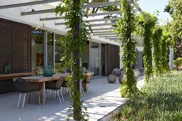 Dining area with long, rectangular wooden table below creeper-covered pergola, contemporary house with sliding shutters on glass walls