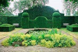 Blühender Frauenmantel vor Wasserbecken in einer Gartenanlage mit formgeschnittenen Hecken