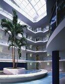 Palme in der Eingangshalle eines Appartementhauses mit natürlicher Belichtung durch das weite Glasdach