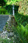 Slate and cobble garden wall abutting ivy-covered wall