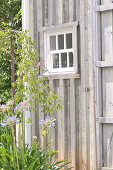 Small lattice window in summerhouse with wooden facade
