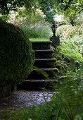 Buchsbaumkugel vor einer Steintreppe im Garten