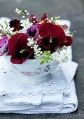 Red violas in floral teacup