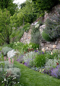 Summer garden with flowers growing out of wall