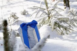 Present with blue ribbon in snow