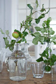 Leafy branch with apple in vintage glass bottle