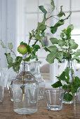 Zweige mit Apfel in Vintage Glasflaschen