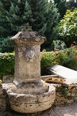 Old stone fountain with gargoyle in Mediterranean garden