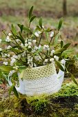 Mistletoe twigs in coffee pot with crocheted cover