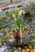 Flower arrangement of narcissus