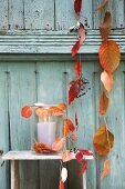 Strings of threaded autumn leaves and lantern against wooden wall