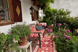Wooden garden bench and pots of herbs and flowering plants on farmhouse veranda