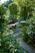 Shady seating area in Mediterranean garden - cat lying on stone floor next to metal chair