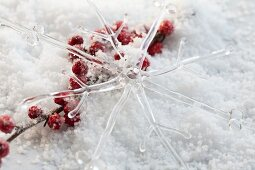 Glass star ornament and holly berries in artificial snow