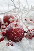Frosty apples, holly berries and snowflake ornaments in artificial snow
