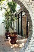 View though partially visible circular opening into courtyard with potted bamboo in front of terrace windows