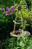 Zusammengebundene Pflanzstäbe vor blühende Dahlien im Garten