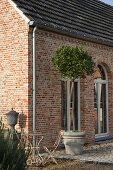 Renoviertes Landhaus mit Klinkerfassade und Bäumchen im Topf auf Terrasse