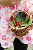 A girl holding a little basket of redcurrants and leaves