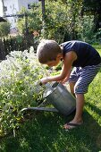 Little boy watering plants in the garden