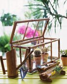 Glass terrariumwith assorted cactus and gardening tools on a wooden surface